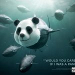 Would you care more if I was a panda?