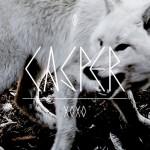 Casper – So perfekt
